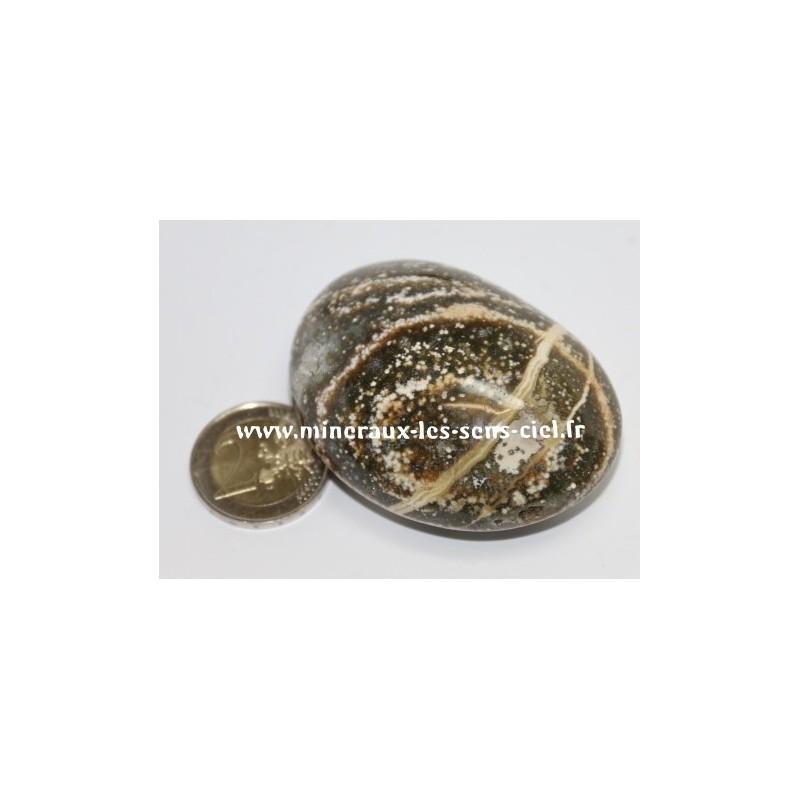 Jaspe Orbiculaire Galet pierre roulée