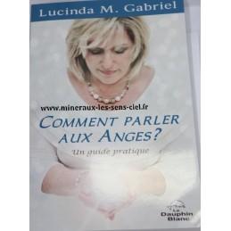Comment parler aux Anges ? - Lucinda M. Gabriel