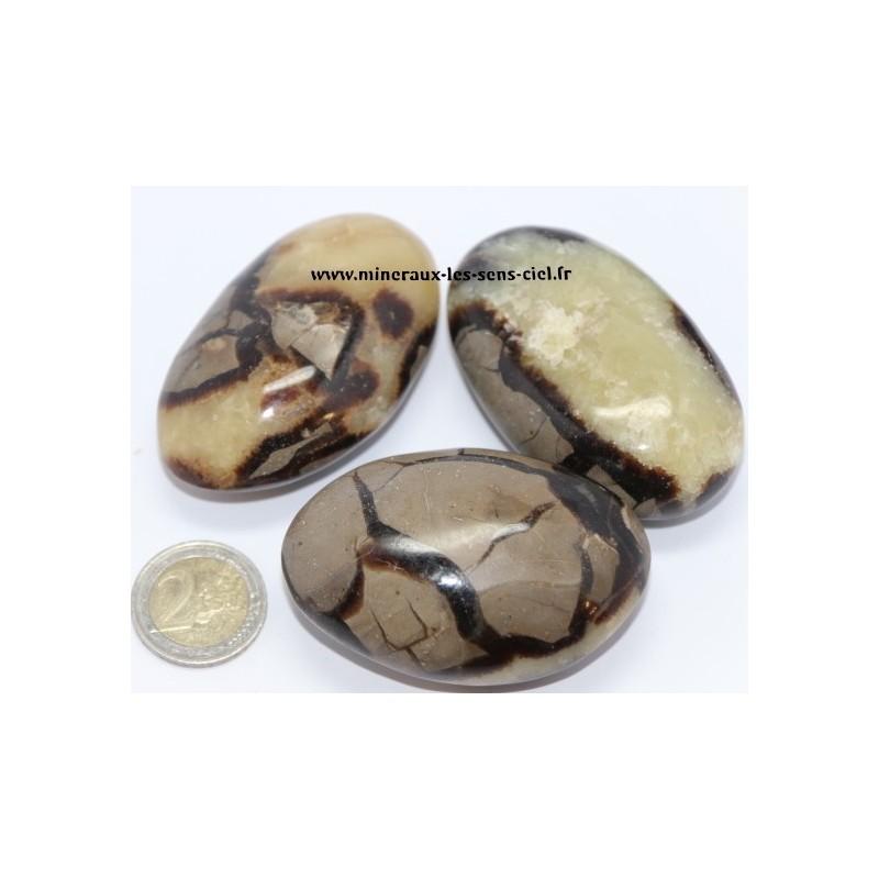 Septaria galet pierre roulée