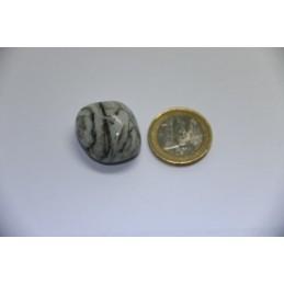 Agate Arborée pierre roulée