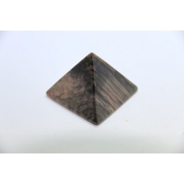 Pyramide en Bois Fossiles Pétrifié