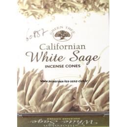 Encens cônes sauge blanche californien