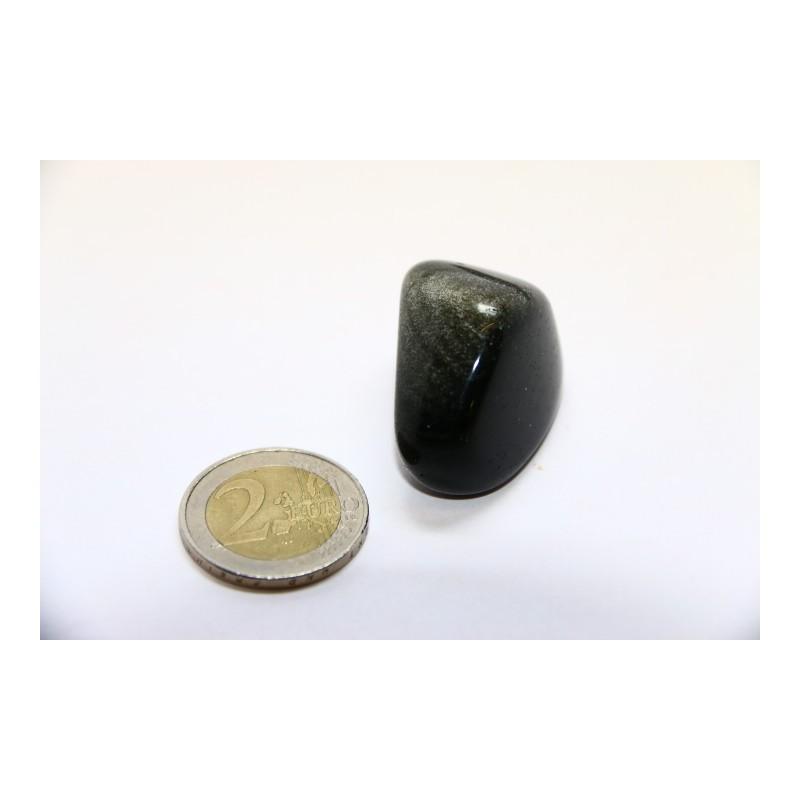 Obsidienne noire argentée pierre roulée