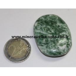 Agate Arborée galet pierre roulée